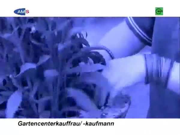 Einzelhandelskaufmann/-frau - Schwerpunkt Gartencenter