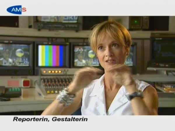 JournalistIn (RedakteurIn, ReporterIn)